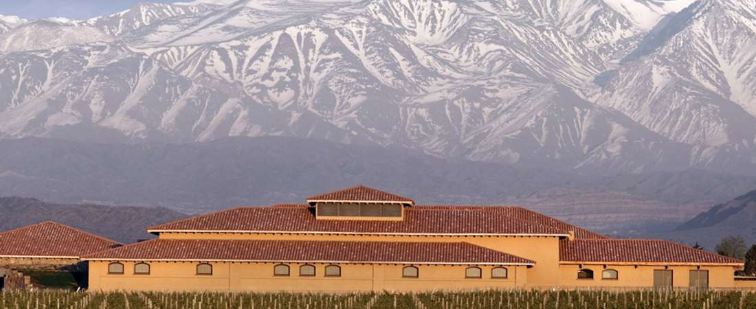 Almorzar entre las viñas, una propuesta de temporada que no hay que dejar escapar