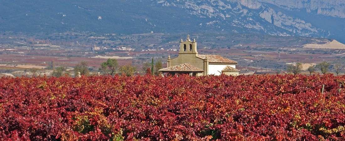 La rutas del vino por Famatina y los Pueblos de la Costa