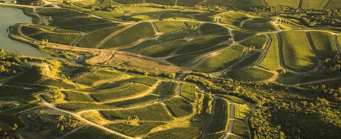Garzón, la  bodega uruguaya que vuela sobre viñedos ondulantes