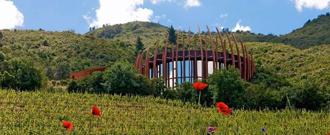 """Encantadora """"bodega nido"""" en los valles de Chile"""