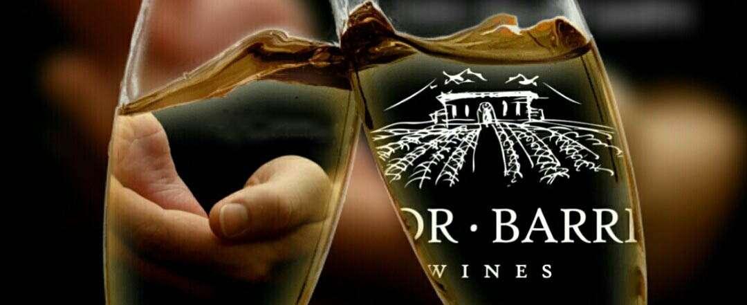 Moor Barrio Wines, la bodega garage más premiada de la Argentina