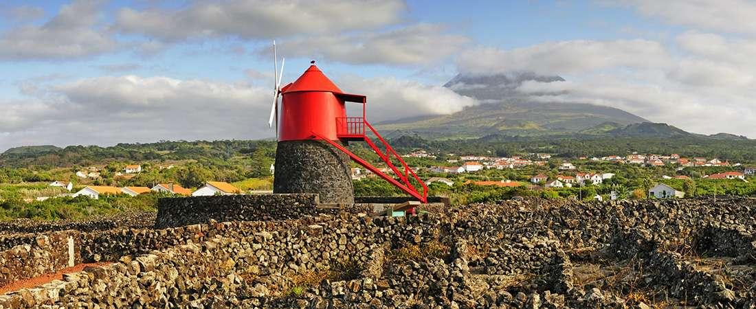 Islas Azores: Vinos que surgen de lava volcánica junto al mar