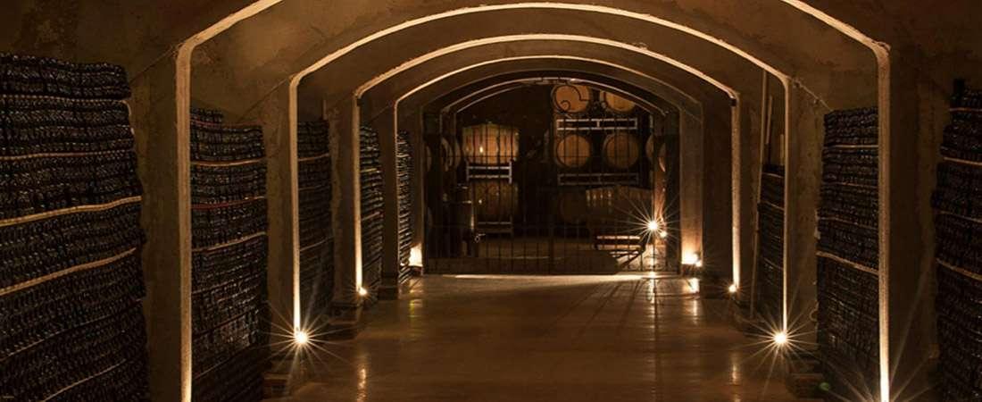 El micro terroir de Chacras de Coria puesto en valor para vinos de alta gama